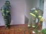 House fire Q-2